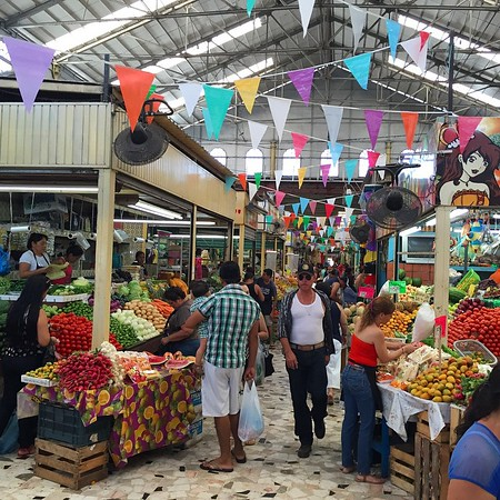 Hunting for interesting foods and Mexican kitchenware at Mazatlan's, Mercado Pino Suarez.