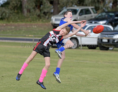 Junior Colts 2018 - Round 12 v Penola