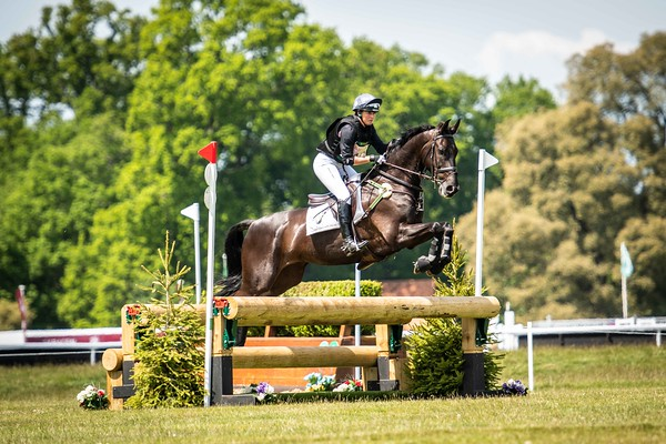 Saracen Horse Feeds Houghton International