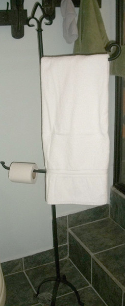 I think this is such a GREAT idea as MANY places in Costa Rica do not have towel bars or toilet paper rolls built in.  Though, if I was doing it, I'd do another one higher - on the left side - on the top (making it for 2 towels) & maybe the toilet paper bar a bit lower (this is nice as you can fit 2 rolls on it).