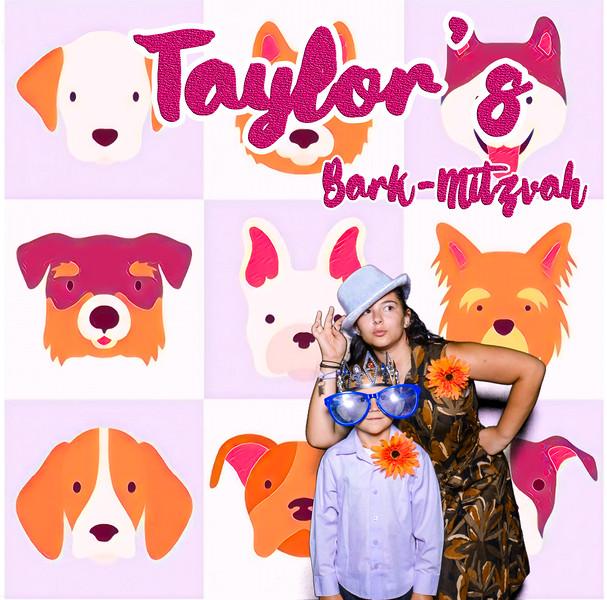 Taylors pawmitzvah-20795.jpg