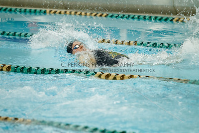 Swimming and Diving vs Cortland 1-18-17
