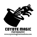 Coyote Magic