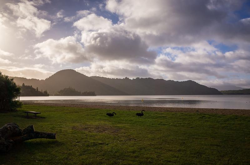 2014-08 New Zealand 1284