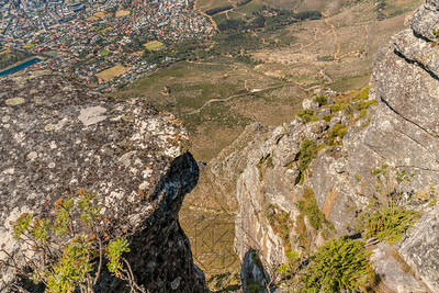 Table Mountain_2661