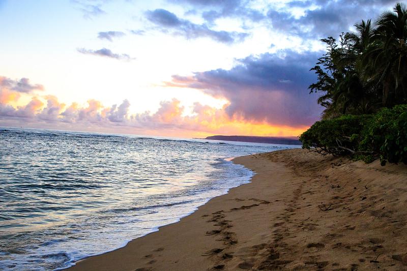 Hawaii-North Shore 2017-9460.jpg
