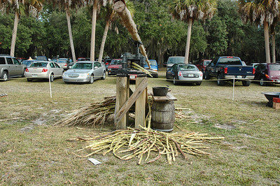 12.14.08~Gamble Plantation, Ellenton, FL