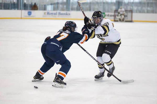Women's Ice Hockey: Lindenwood vs Midland