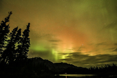 Aurora Borealis,  near Denali NP
