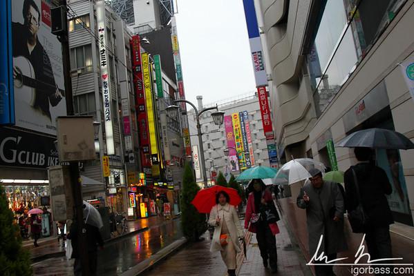 2009/11/20 Last Week in Tokyo