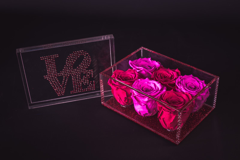 Rose Inspired Valentines Collection-5592.jpg