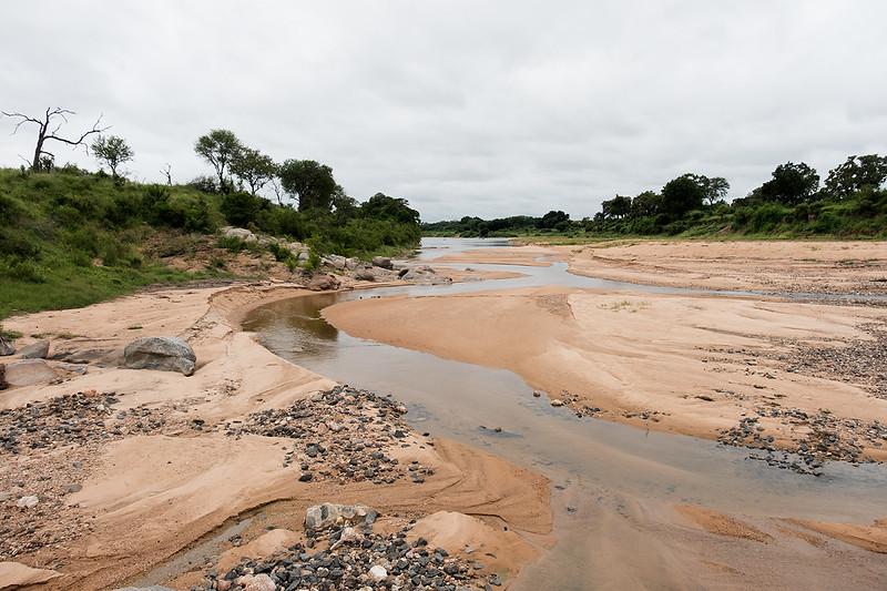 River 1702241981.jpg