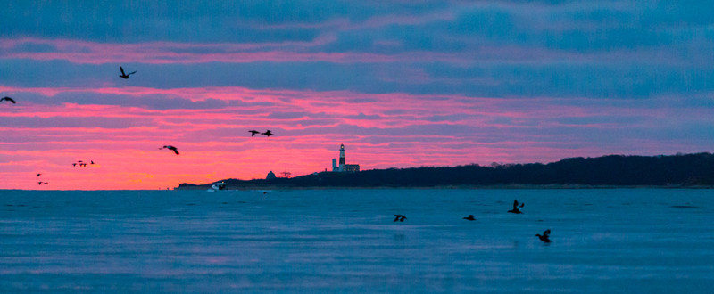 Long Island-115.jpg