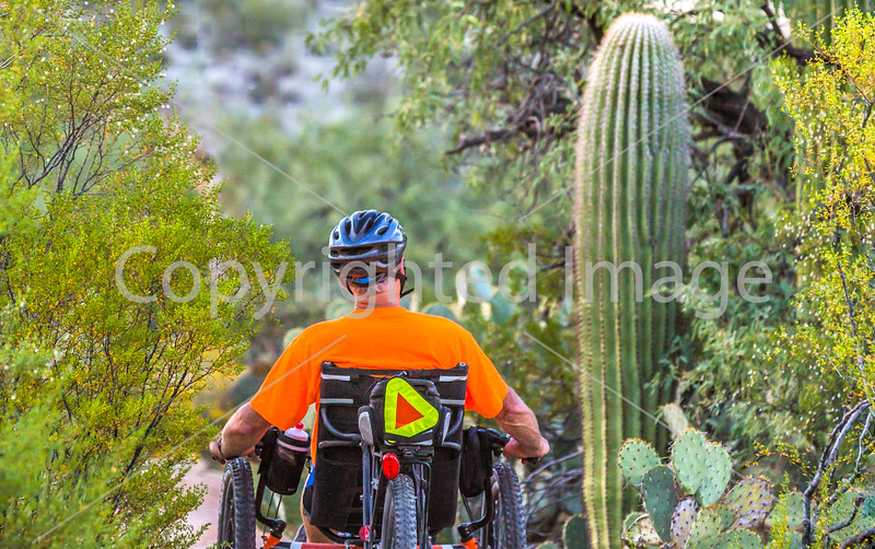 Saguaro National Park - Recumbent Trike Cyclist on Road & Trail