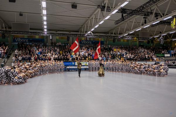 Gymnastikdag Viborg Stadionhal