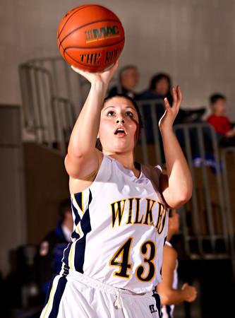 Wilkes Women's Basketball v DeSales 02/15/12