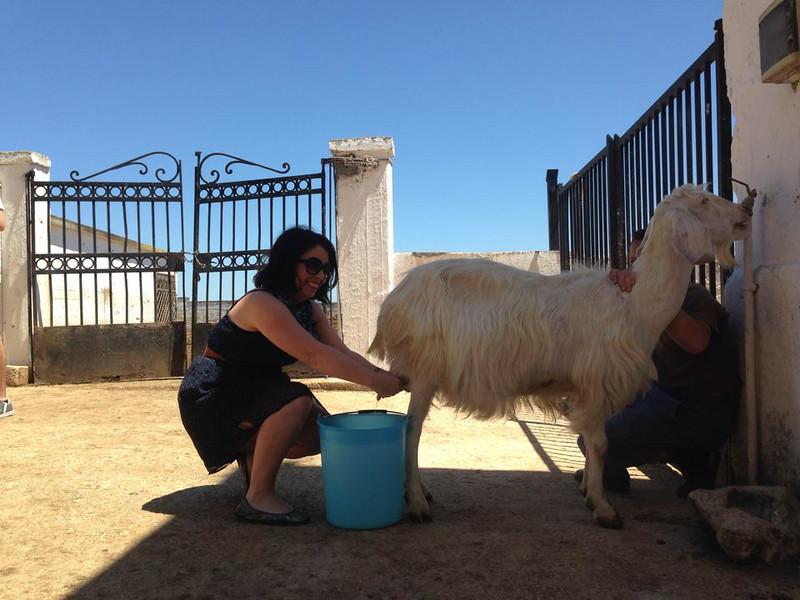 me milking goat 2.jpg