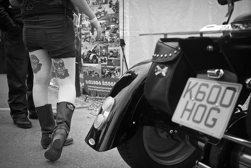 hog legs.jpg