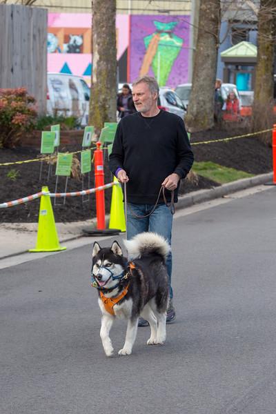Richmond Spca Dog Jog 2018-594.jpg