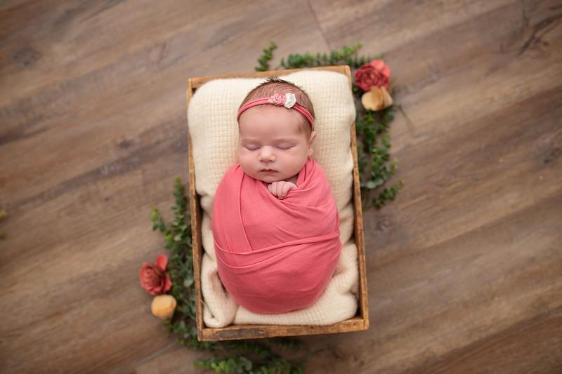 Cook Newborn-6.jpg