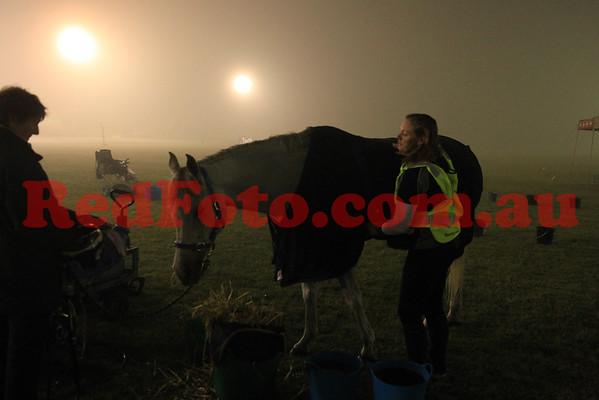 2014 10 04 Tom Quilty Gold Cup Endurance Leg 1