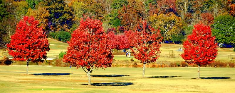 North Fulton Golf Course
