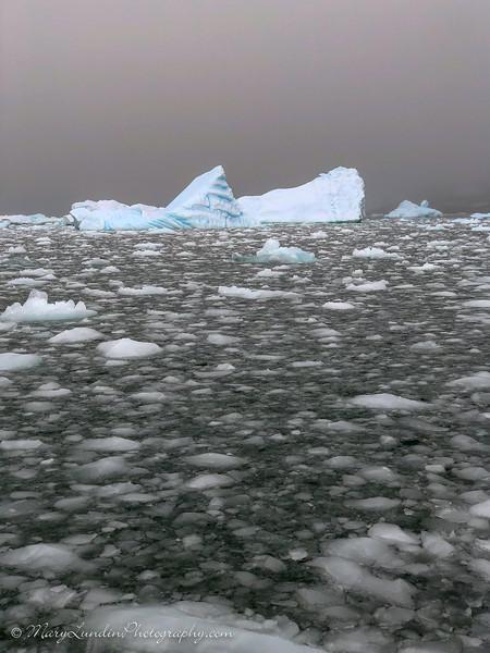 Antarctic-13