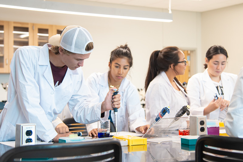 Students in Professor Valenza's biology class learning how use pipettes in their lab.