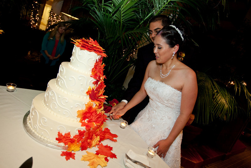 Emmalynne_Kaushik_Wedding-1205.jpg