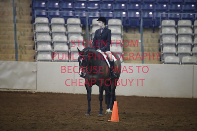 sun 113. APHA - Yth Hunt Seat Eq 18 & under