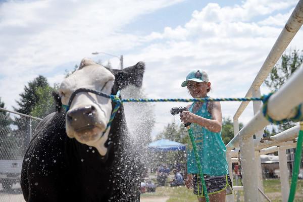 2020 Sheridan County Fair