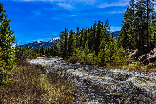 Day on the Raging East Fork Blacks Fork River in the High Uintas