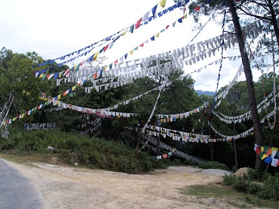 Prayer Flags Himachal Pradesh