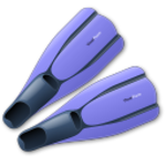 flippers-icon.png
