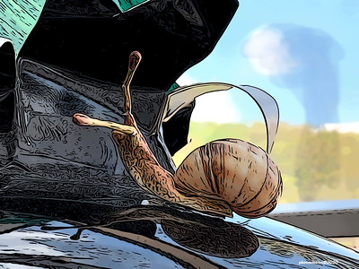 DIGITAL-CREATIVE-UNASSIGNED-SILVER-SNAIL SKETCH-RICHARD CRONK