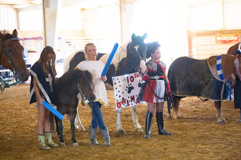 HorseCostume-41.jpg