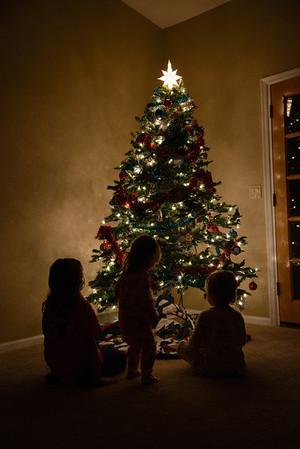 Filardi Kids Under Tree