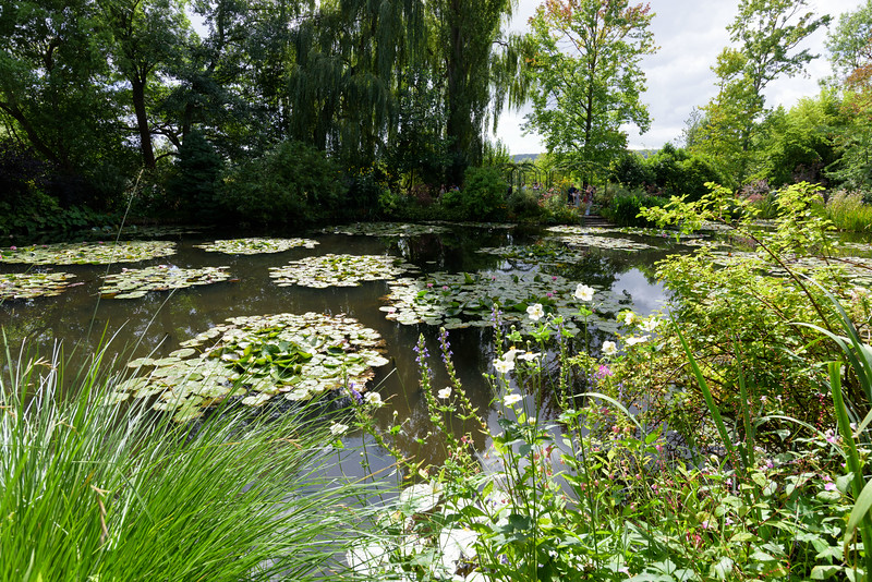 Claude Monet's garden at Giverny