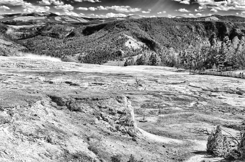 31 Dec 13.  Well, here we are at year's end and for our final image in 2013, and the conclusion of year 8 of the Daily Image, it being B&W Tuesday, a monochrome of the top of the upper terrace of Mammoth Hot Springs. Most of this table top like portion of the spring is white, the colors of gold, rust, yellow and similar being concentrated on the end where the water spills over the edge.  You can't see the main portion of this as it lies beyond the boardwalk where it runs into the trees at the right hand side of the image. We'll see several images of that area in the next couple of weeks.  Although it doesn't appear so, the shot was taken at almost 1200 sun time and is not nearly as flat as you might imagine it would be taken at such a time. Hang onto this shot for a few days as it, along with the one I sent with the map a couple week back, will help you orient yourself for the other pictures. Nikon D300s; 18 - 200; Aperture Priority; ISO 200; 1/640 sec @ f /9.