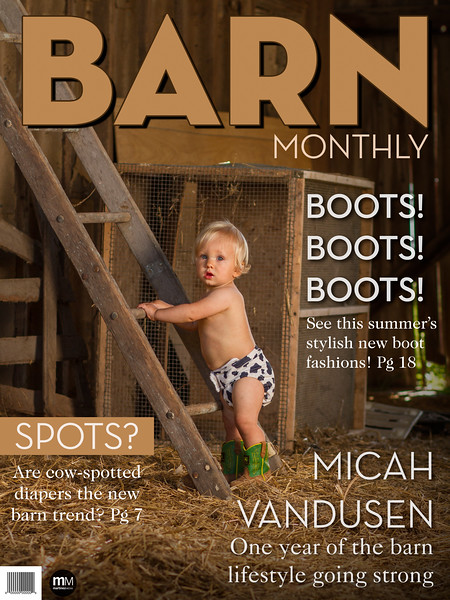 Has it really been a year already? We spent some time with Micah to celebrate his first birthday! We had a great session exploring the barn life with him.