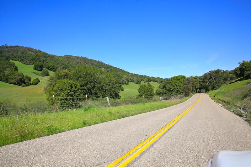 websize_Old Creek Road in Spring-0840.jpg