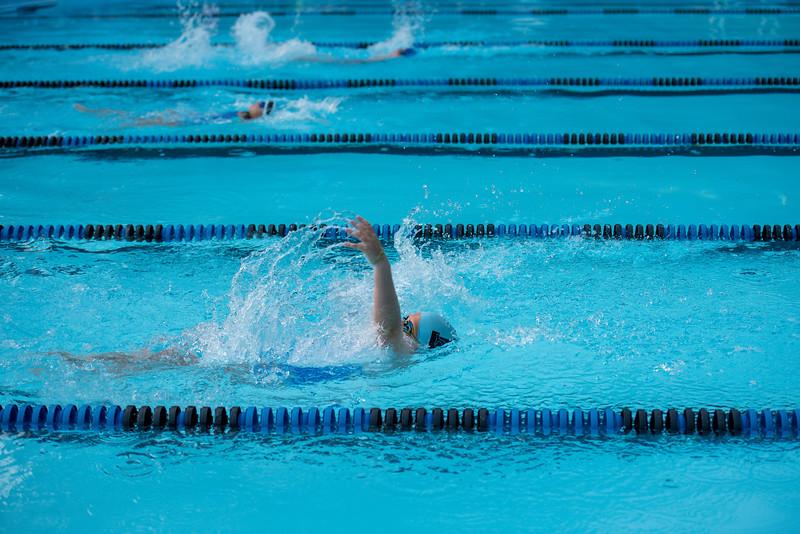 lcs_swimming_kevkramerphoto-404.jpg