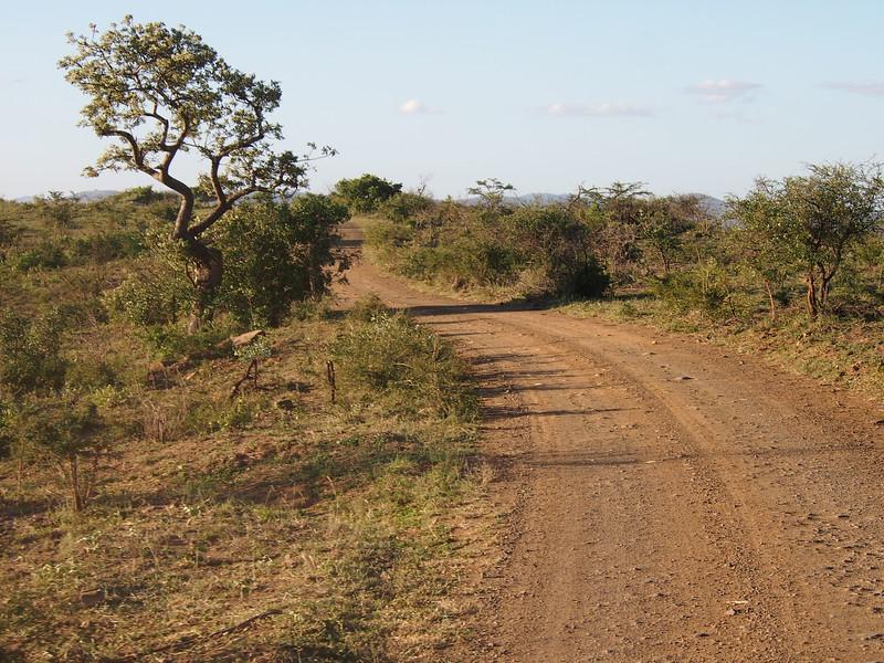 P5046246-dirt-road.JPG