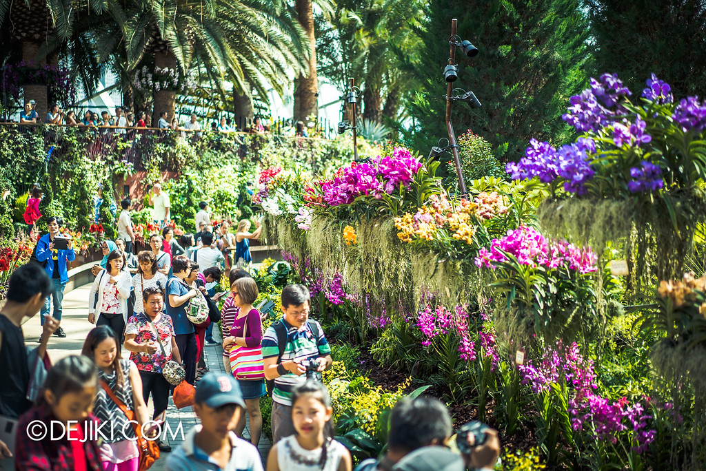 Gardens by the Bay - Orchid Extravaganza 2016 - crowds at flower dome