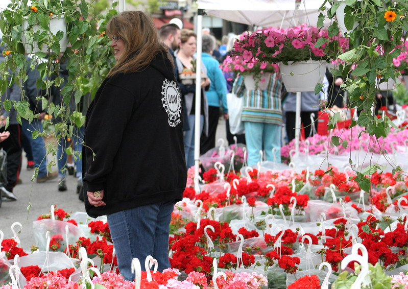 Visitors browse a wide selection of zinnias, geraniums, begonias, and other flowers and plants at Sunday's 24th Annual Royal Oak in Bloom festival in Royal Oak, Michigan on May 14, 2017.  Over 65 vendors offered hanging baskets, plants, vegetables, perennials, annuals, and garden accessories for sale to families shopping this annual Mother's Day event hosted by the Royal Oak Chamber of Commerce. (Photo by: Brandy Baker)