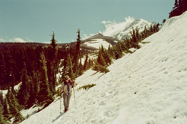 Mt Hood in Svema  Colour 125 - 2020/06