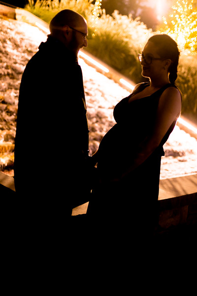 Paone Photography - Alex and Renee Maternity-9159.jpg