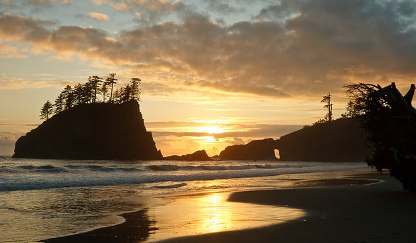 Second Beach, Washington Coast