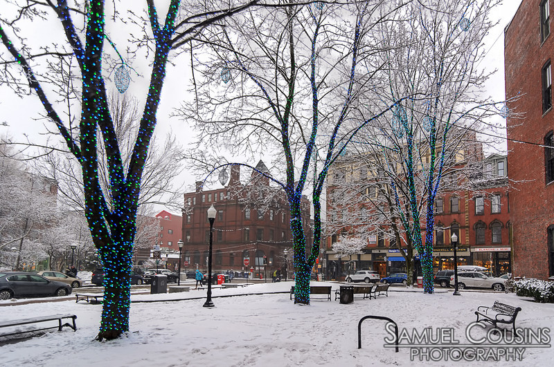 Snowy day in Tommy's Park