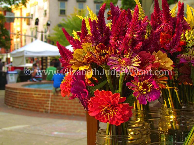 Easton Farmers Market WW 9/9/15